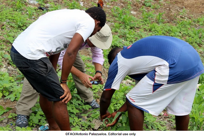 Participate in the Digital Agriculture Photo Contest | E-Agriculture